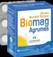 Lehning Biomag Comprimés à Croquer Agrumes B/90 à LYON