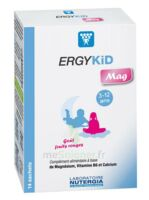 Ergykid Mag Poudre Solution Buvable 14 Sachets à LYON