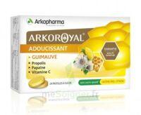 Arkoroyal Propolis Pastilles Adoucissante Gorge Guimauve Miel Citron B/24 à LYON