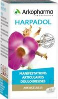 Arkogelules Harpagophyton Gélules Fl/150 à LYON
