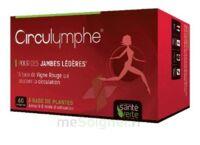 Santé Verte Circulymphe Triple Actions B/60 à LYON