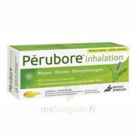Perubore Caps Inhalation Par Vapeur Inhalation Plq/15 à LYON