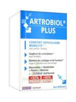 Ineldea Artrobiol Plus 120 Gélules à LYON