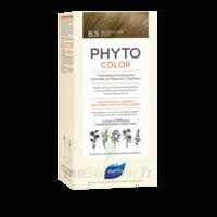 Phytocolor Kit Coloration Permanente 8.3 Blond Clair Doré à LYON