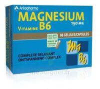 Arkovital Magnésium Vitamine B6 Gélules B/120 à LYON