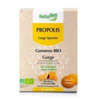 Herbalgem Propolis Large Spectre Gomme Bio B/24 à LYON