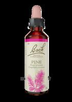 Fleurs De Bach® Original Pine - 20 Ml à LYON