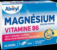 Govital Magnésium Vitamine B6 Comprimés B/45 à LYON